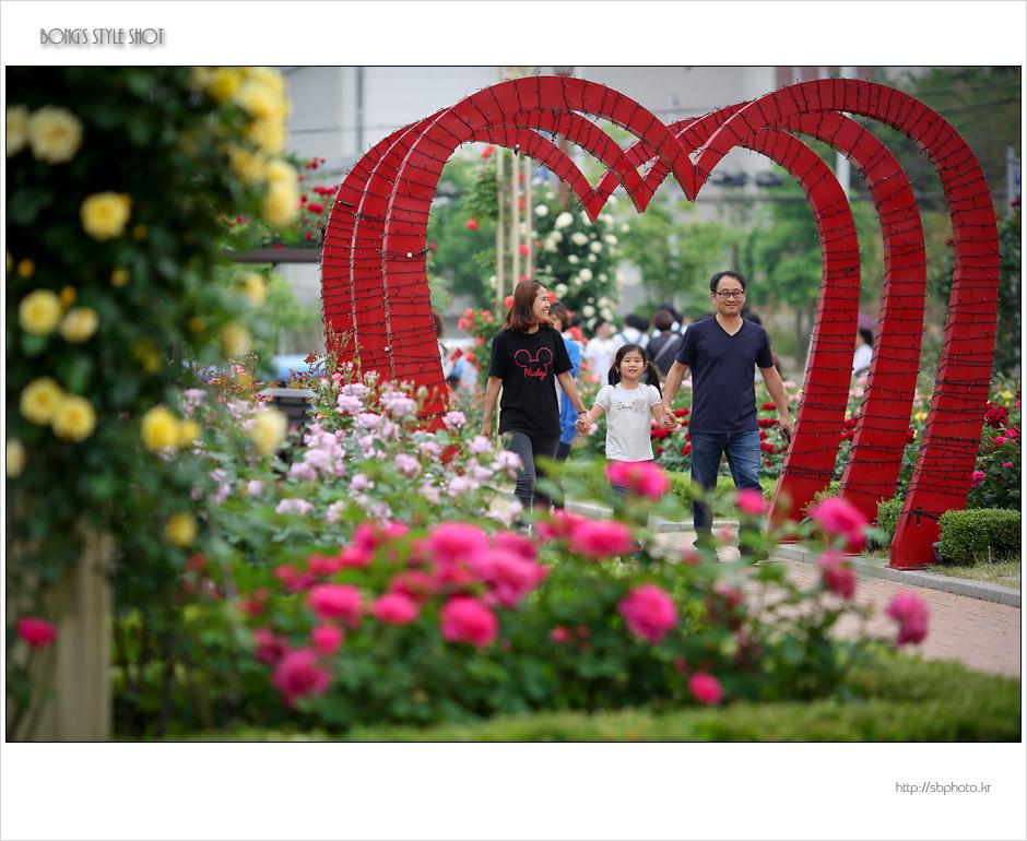 20150515rosepark4.jpg