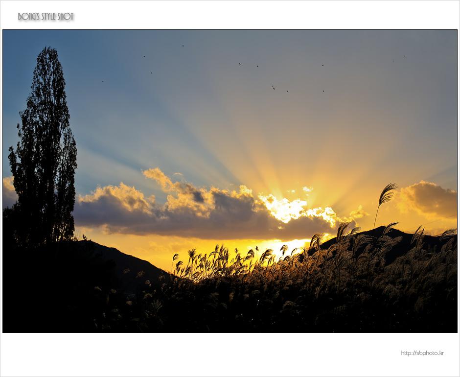 20121111dalseong.jpg